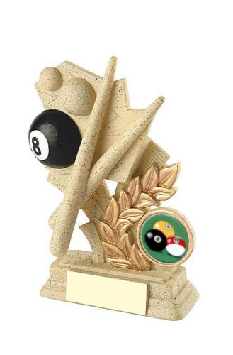 Sandstone Effect Resin Pool Trophy Award Personalised
