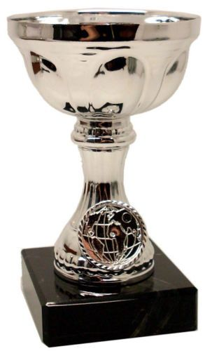 Silver Multi Award Trophy Cup | County Engraving