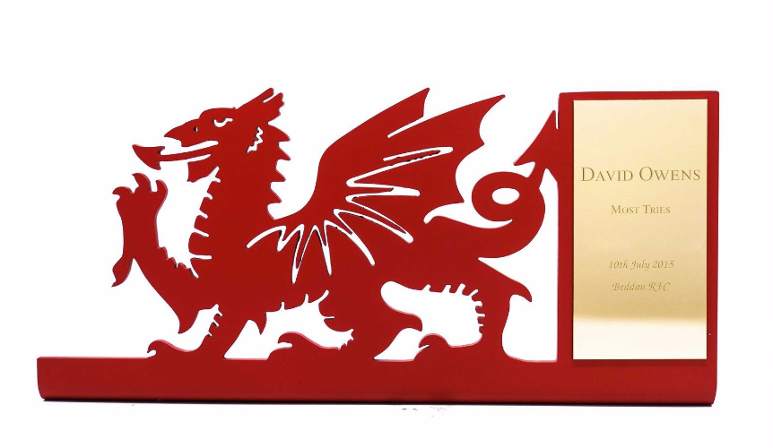 welsh dragon rugby award. Black Bedroom Furniture Sets. Home Design Ideas